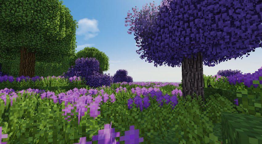 Idyllische Wiese mit Blumen sowie Licht- und Schatteneffekten