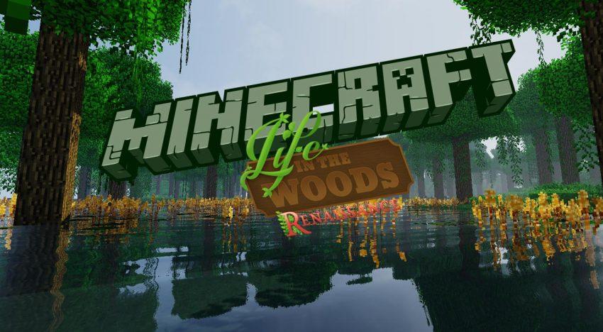 Das beste Minecraft Modpack: Life in the Woods Renaissance
