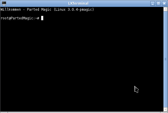 Terminal Fenster Parted Magic Linux zum Floppy-Stick Kopieren